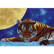 ART 500 db-os Puzzle - Moon Tiger - 5072