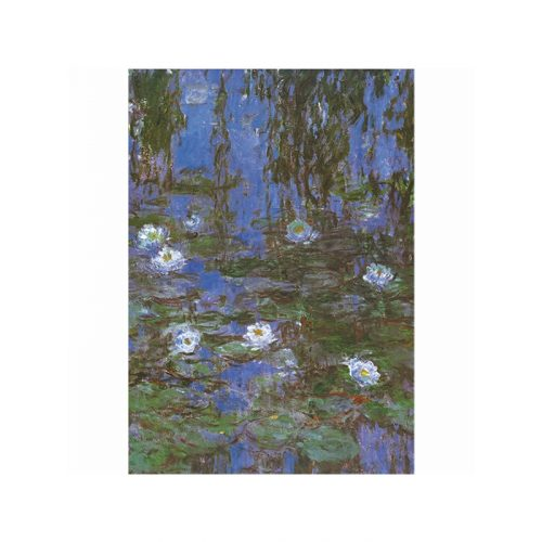 D-Toys 1000 db-os puzzle - Monet : Water Lilies 69641