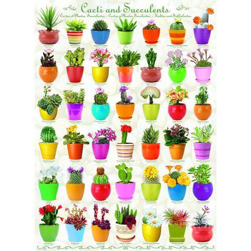 Eurographics 1000 db-os puzzle - Cactus & Succulents - 6000-0654