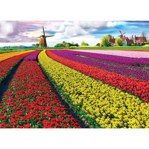 Eurographics 1000 db-os puzzle - Tulip Fields Netherlands - 6000-5326