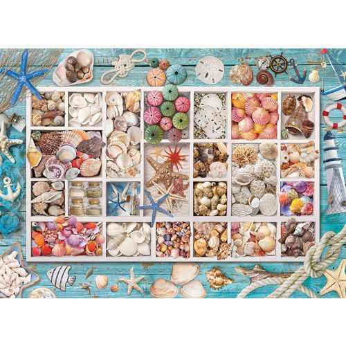 EuroGraphics 1000 db-os Puzzle - Seashell Collection - 6000-5529