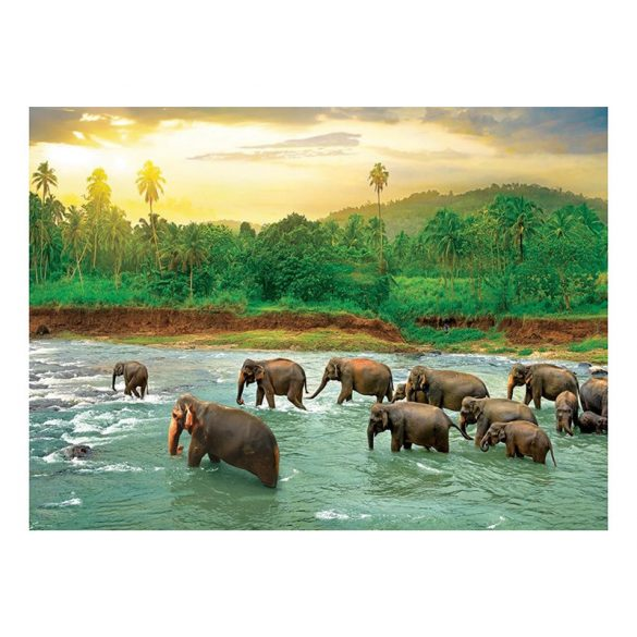 Eurographics 1000 db-os Puzzle - Save our Planet Collection - Rain Forest - 6000-5540