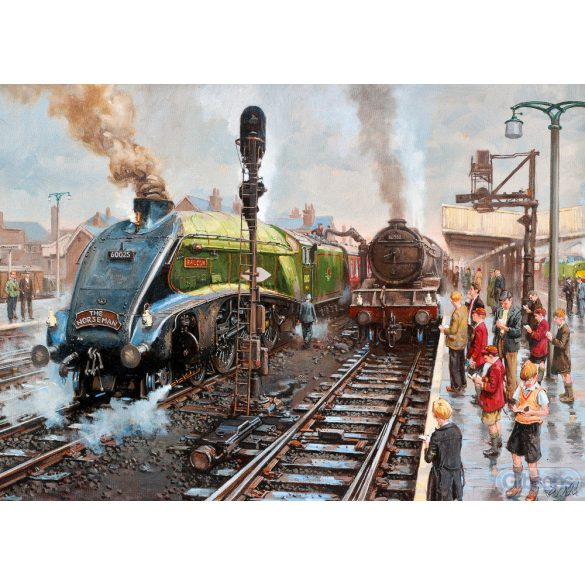 Gibsons 1000 db-os puzzle - Spotters at Doncaster 6317
