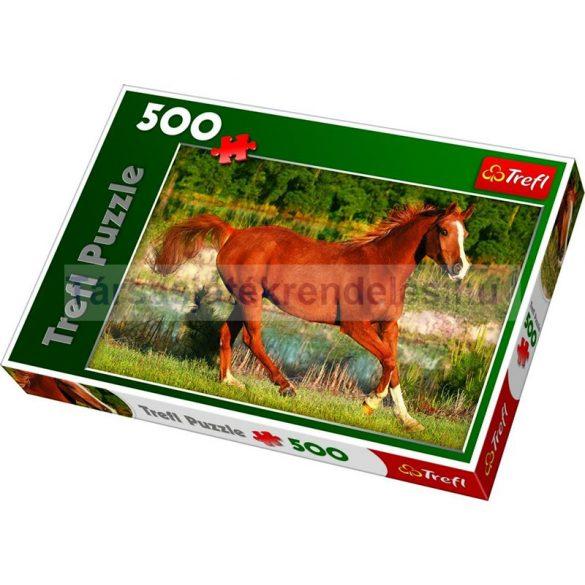 Trefl A galopp szépsége 500 db-os puzzle (37184)